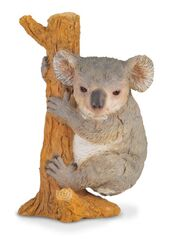 COLLECTA - Koala Na Strome