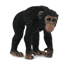 COLLECTA - Šimpanz - samica