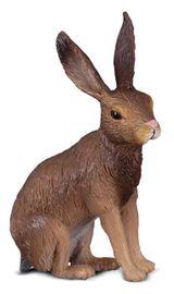 COLLECTA - Zajac Poľný