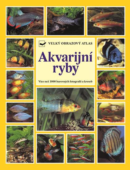 Akvarijní ryby - Velký obrazový atlas - Wally Kahl, Burkard Kahl, Dieter Vogt