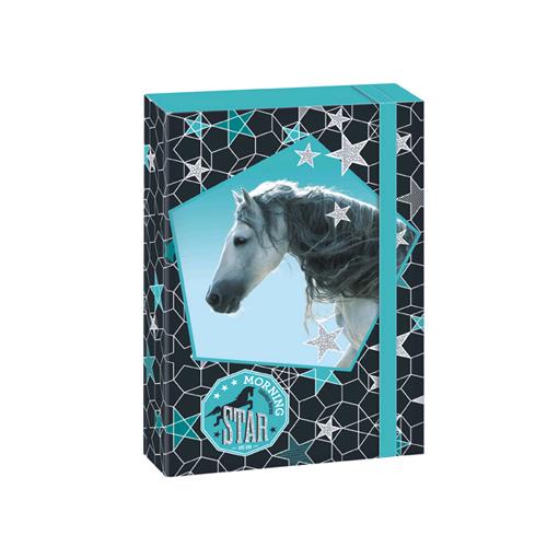 ARSUNA - Box na zošity A5 Horse