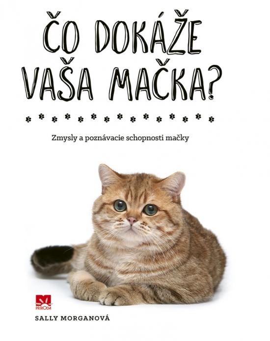 Čo dokáže vaša mačka? - Sally Morganová