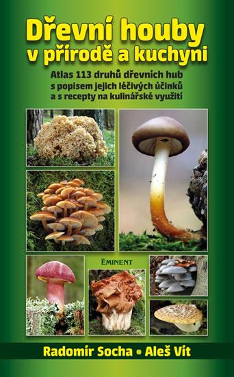 Dřevní houby v přírodě a kuchyni - Radomír Socha, Aleš Vít