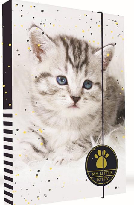KARTON PP - Box na zošity A4 Mačka