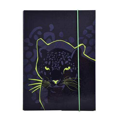 KARTON PP - Box na zošity A5 Panther