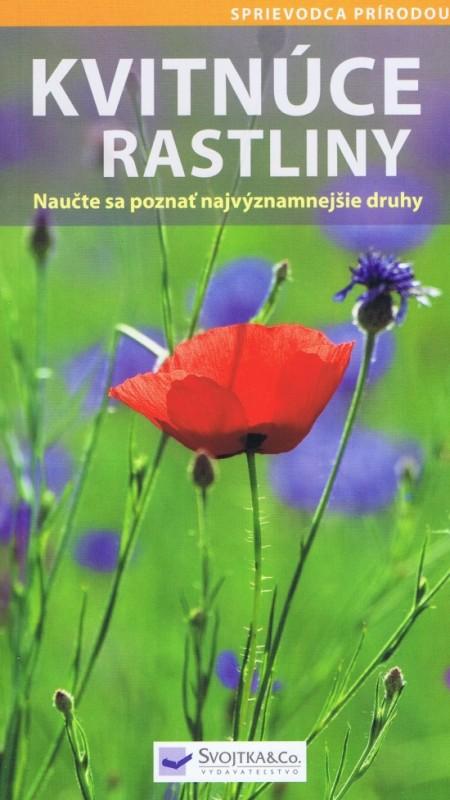Kvitnúce rastliny - Kolektív autorov