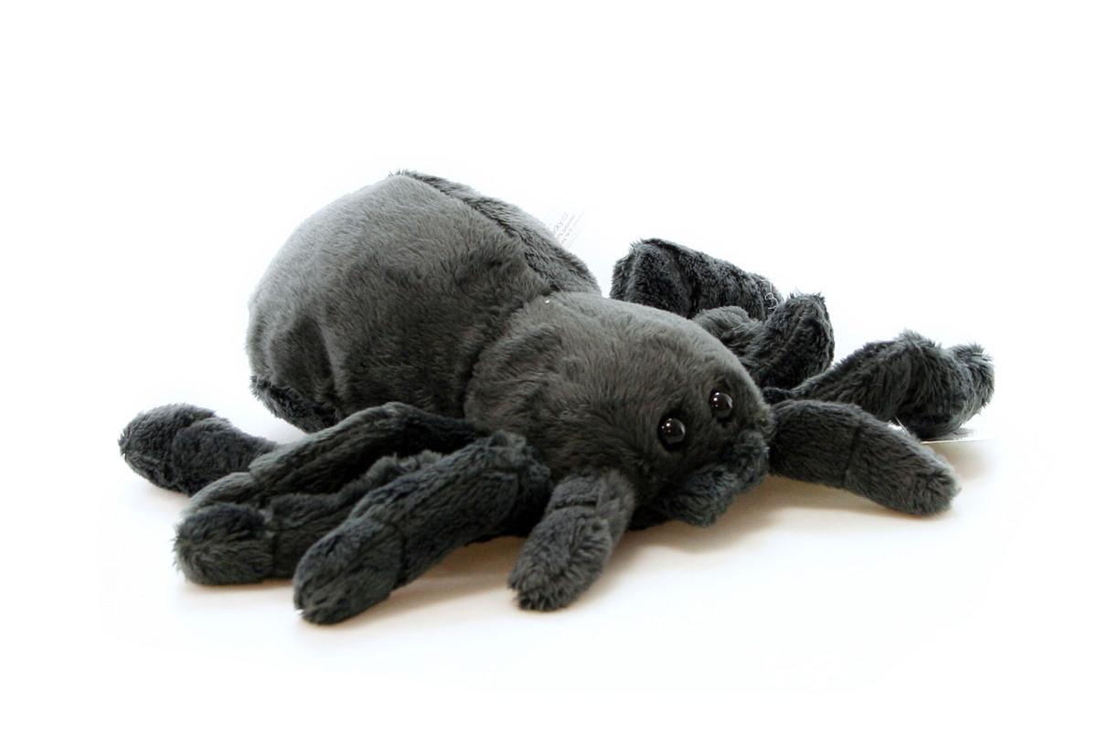 čierna chlpaté mačička obrázok Veľká liga striekať