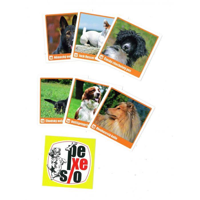 MIČÁNEK - Pexeso Psy v krabičce