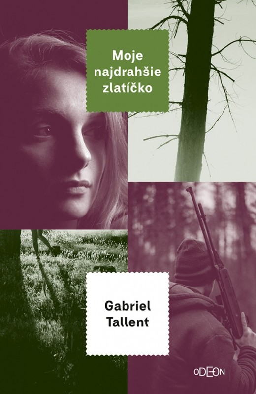 Moje najdrahšie zlatíčko - Gabriel Tallent