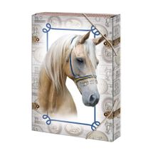 ARGUS - Box na zošity A5 Horses