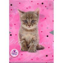 BENIAMIN - Vrecko na prezúvky The Sweet pets - mačka