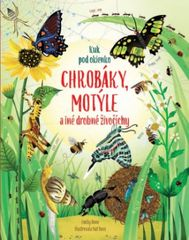 Chrobáky a motýle - Kolektív autorov