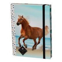 DASAO - Box na zošity A4 Kôň Snow