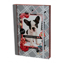DASAO - Box na zošity A4 Pet - Puppy