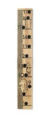 KIDS CONCEPT - Meter rastový drevený Neo