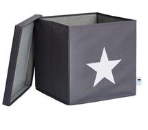 LOVE IT STORE IT - Box na hračky s krytom - šedý, biela hviezda