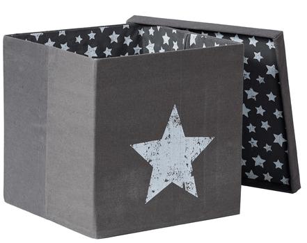 LOVE IT STORE IT - Box na hračky s krytom - šedý, Vintage Star