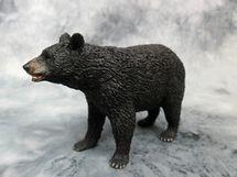Medveď Americký Čierny