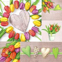 POL-MAK - Papierové servítky Colourful Tulips Collage