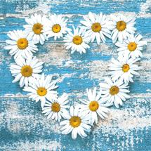 POL-MAK - Papierové servítky Daisy Hearts on Old Wooden Background