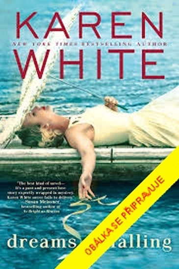 Sny o pádu - Karen White