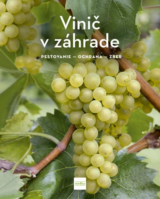 Vinič v záhrade - pestovanie - ochrana - zber - Angelika Schartl