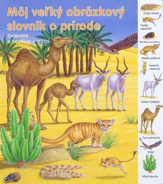 Zvieratká a rastliny v púšti - Môj veľký obrázkový slovník - Kolektív